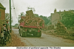 Destruction-of-Parkland-Near-The-Shades